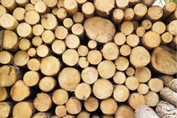 потребность в дровах
