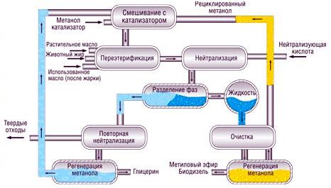 полный цикл глицериновой фазы
